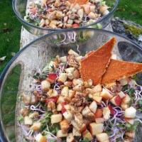 RAW APPLE WALUNT AND CHINA ROSE RADISH SPROUTS SALAD