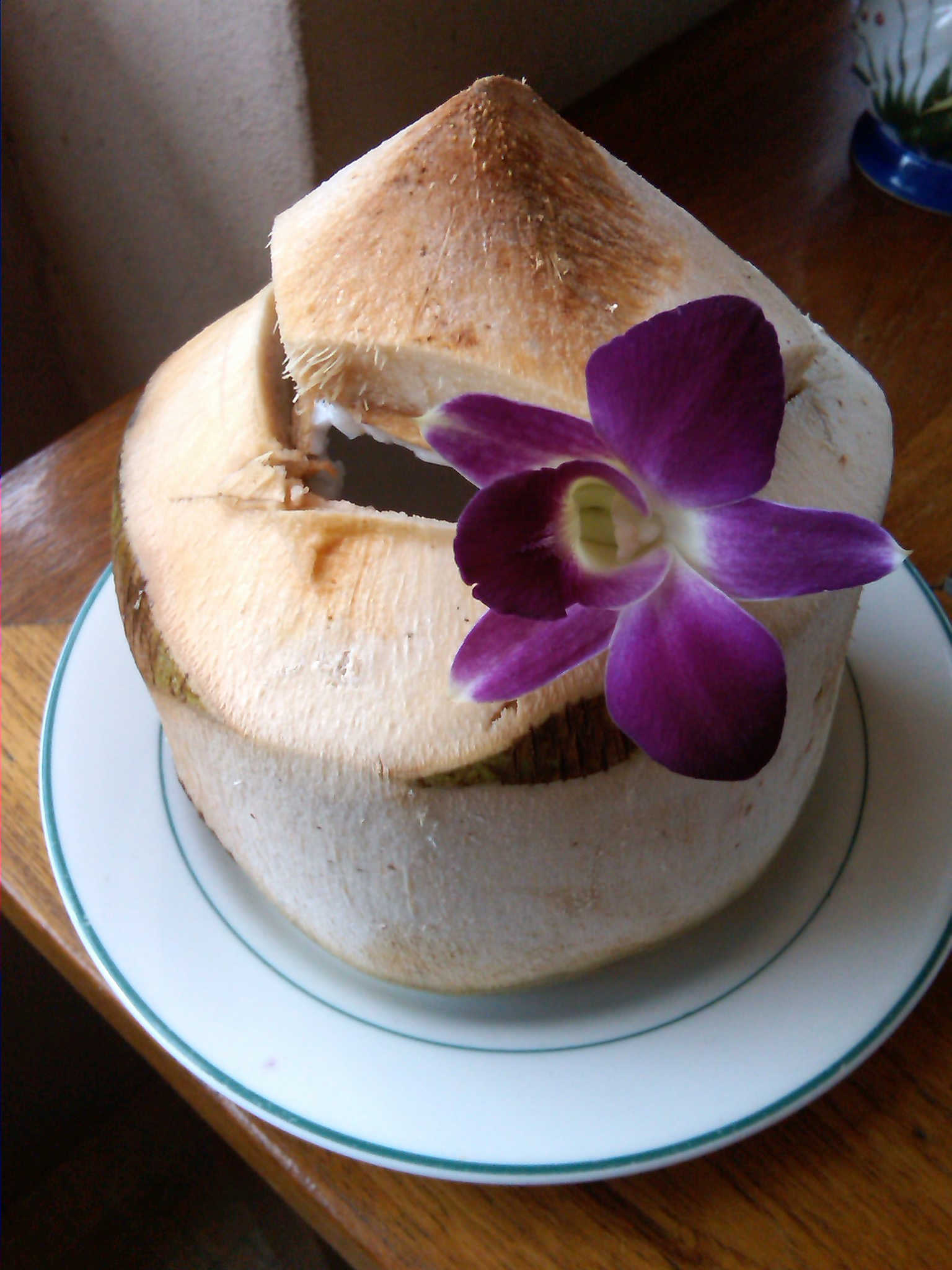 young coconut juice is a miracle wrinkle cure that works from the inside