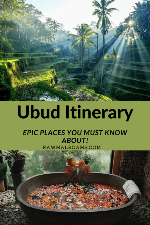 All the epic places in Ubud and Ubud area that you must see! 1,2,3,4 days Ubud Itinerary. #ubud #ubuditinerary #bali #balitravel #indonesia
