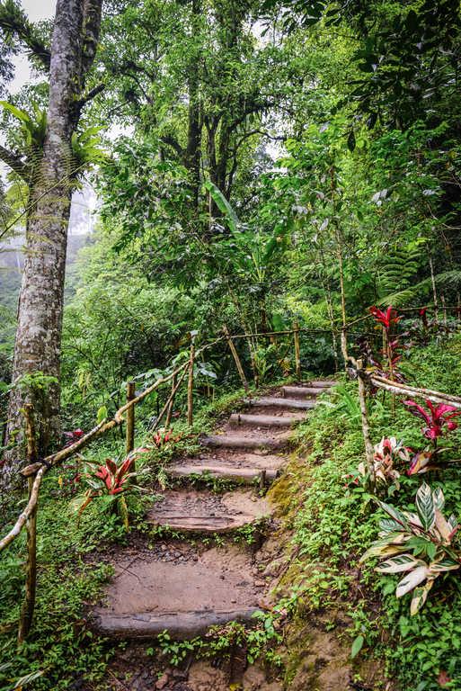 a path to Banyumala twin waterfall