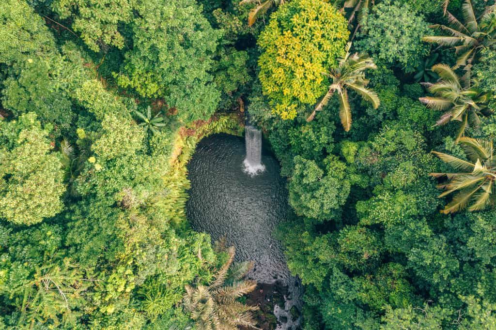 tibumana waterfall ubud
