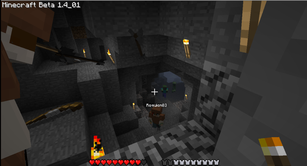 More Multiplayer Minecraft: Glitches and Wolves (2/6)