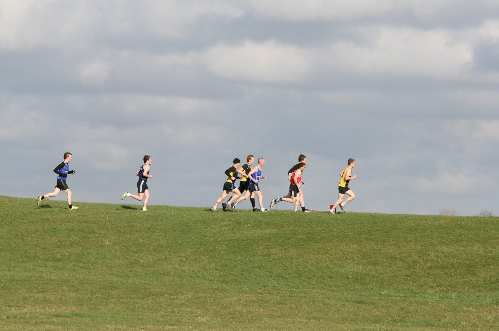 Lets Go Country! Top Online Articles on Cross Country Running (1/2)