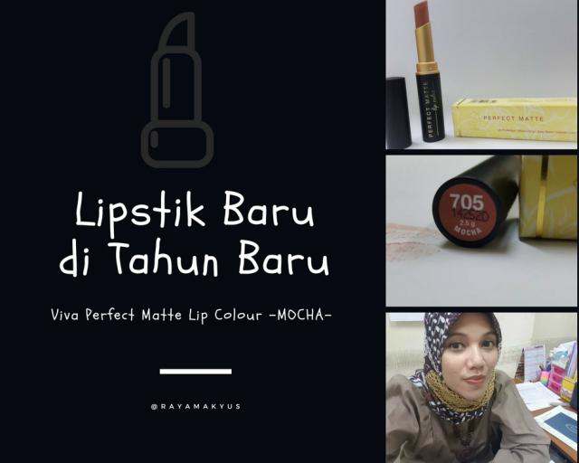 Lipstik Baru di Tahun Baru, Viva Perfect Matte Lip Colour Mocha