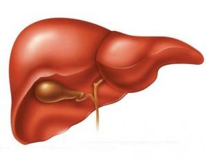 cure-liver-problem