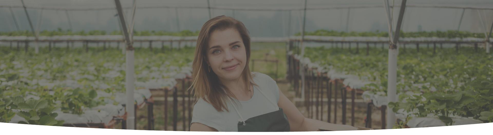 Contabilidade para Agronegócio em Goiânia - GO