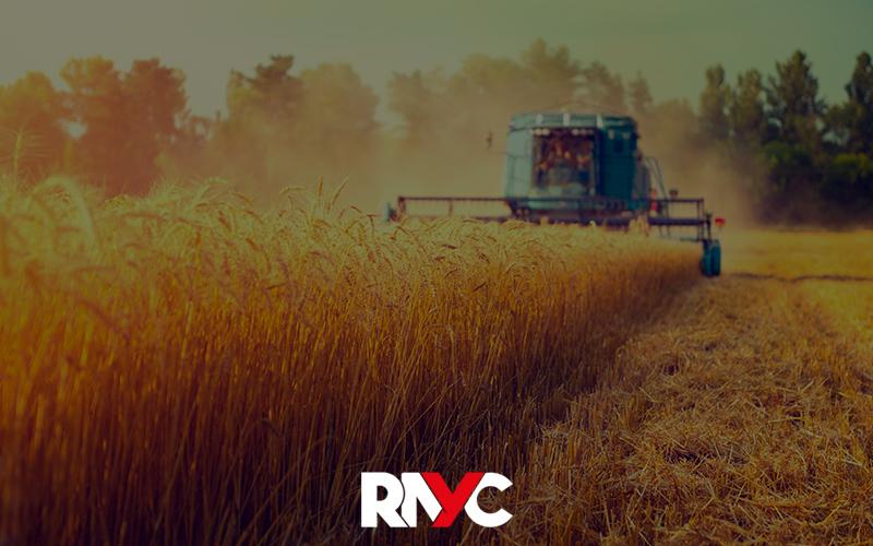 Gestão Rural – Como Otimizar Processos E Aumentar A Produtividade