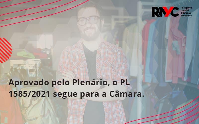 Aprovado Pleno Plenario O Pl 15852021 Segue Para A Camara Rayc - Contabilidade em Goiânia - GO | Rayc Contabilidade