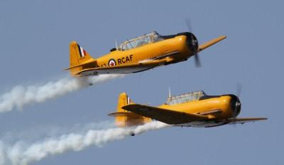 Yellow Thunder - Harvards