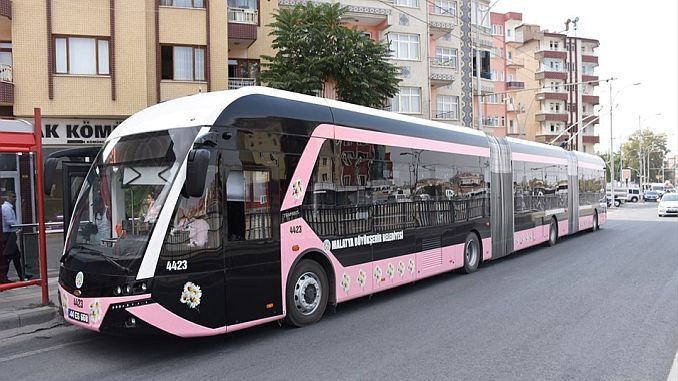 pink trambus