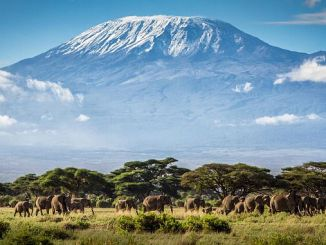 Tanzanya kilimanjaro dagina zai yi motar mota