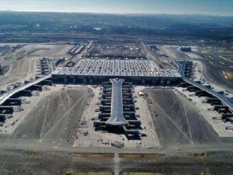 مليون شجرة للمطار