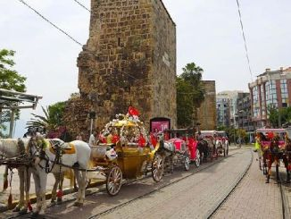 carriage horse and car fare in Antalya