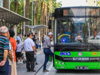 new bus lines start in marina in August