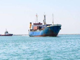 ギンバイカの海は汚染されていません