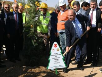 1000 saplings were brought together with soil under the slogan of breath to the future