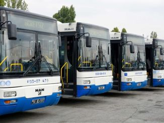 What is the number of active vehicles in the EGO bus fleet?