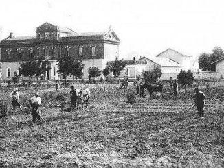 Ottoman စိုက်ပျိုးရေးလုပ်ငန်း