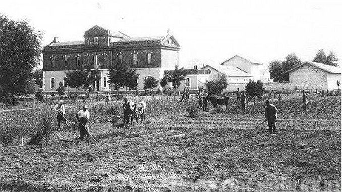 osmannisk landbrug