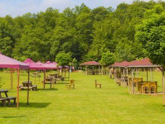 內政部關於餐廳,飯店和野餐的新通知