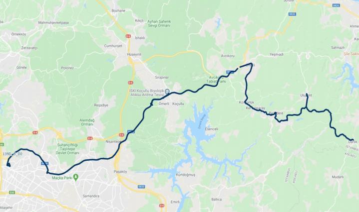 D-line route