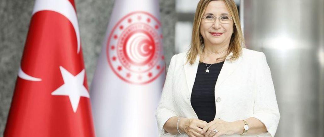Zeitverlängerung für Fahrzeuge türkischer Staatsbürger im Ausland