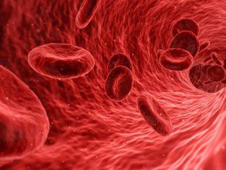 Що таке імунна система або імунна система, як її зміцнити