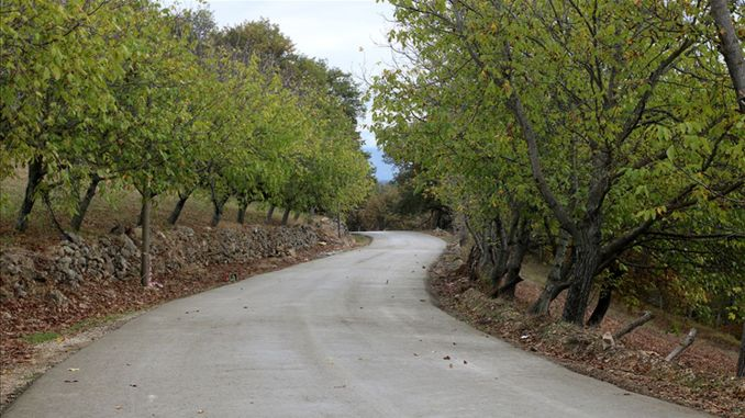 Kilometers of concrete road works have been completed in Sakarya