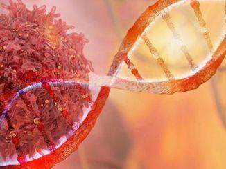 covid pandemisi kanser olarak anilmasin istiyoruz