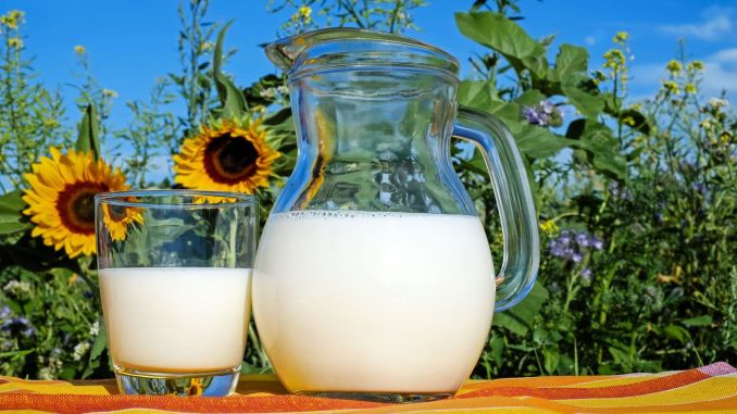 Million lira milk support payment starts today