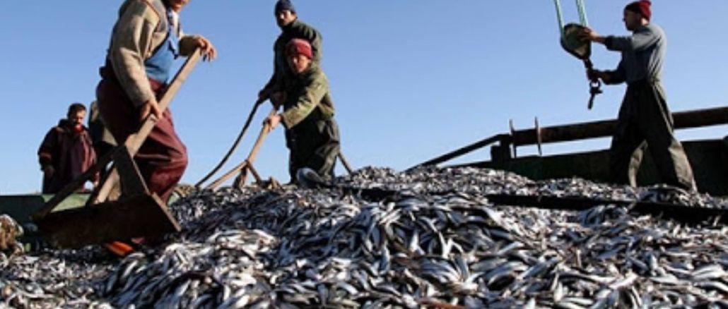 Zabrana ribolovne sezone započinje večeras