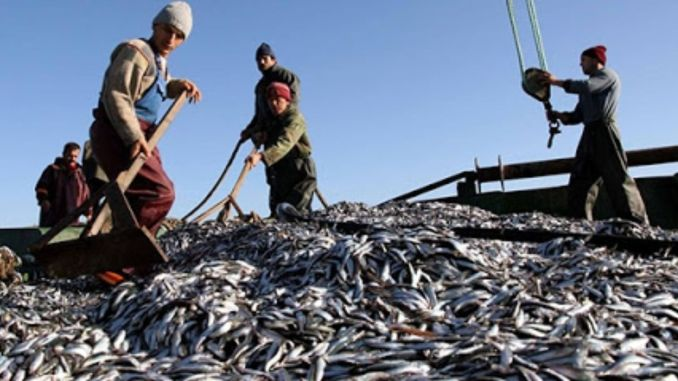 The fishing season ban begins tonight