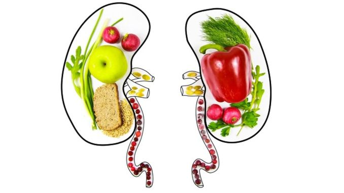 attention, wrong nutrition invites kidney failure