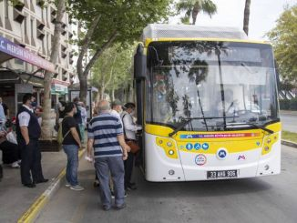 myrtle bigsehirin environmental buses yellow lemons started the journey