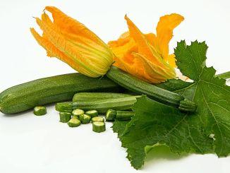 Koje su blagodati tikvica, jednog od omiljenih povrća ljeti?