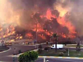 latest situation in manavgat forest fire