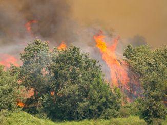 Das Büro des Gouverneurs von Manisa gab bekannt, dass zwei gefangene Terroristen nichts mit dem Feuer zu tun haben