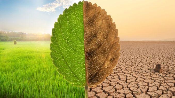escarus skreće pozornost na ključni značaj vode u rješavanju klimatske krize