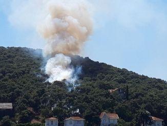 Пожар у шумском подручју у Хеибелиади стављен је под контролу