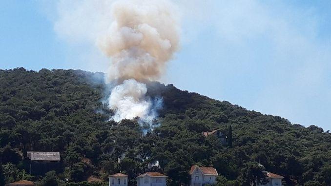 Der Brand im Waldgebiet in Heybeliada wurde unter Kontrolle gebracht
