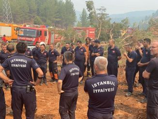 ibb-Teams sind tagelang im Waldbrandkampf