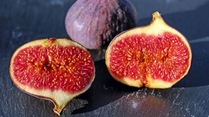 important benefit of fig