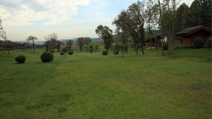 Kemerburgaz Urban Forest will be open throughout August