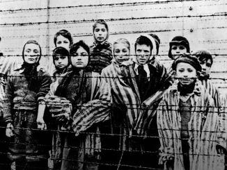 Auschwitz Gazla Oldurme Katliamlari