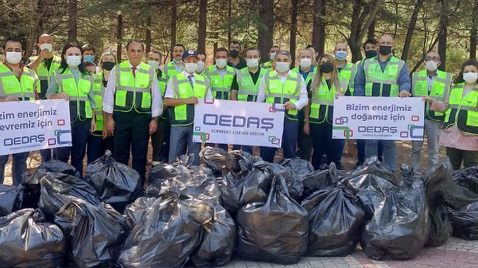 forest clearing by oedas employees