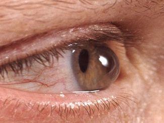 beware of eye diseases in autumn