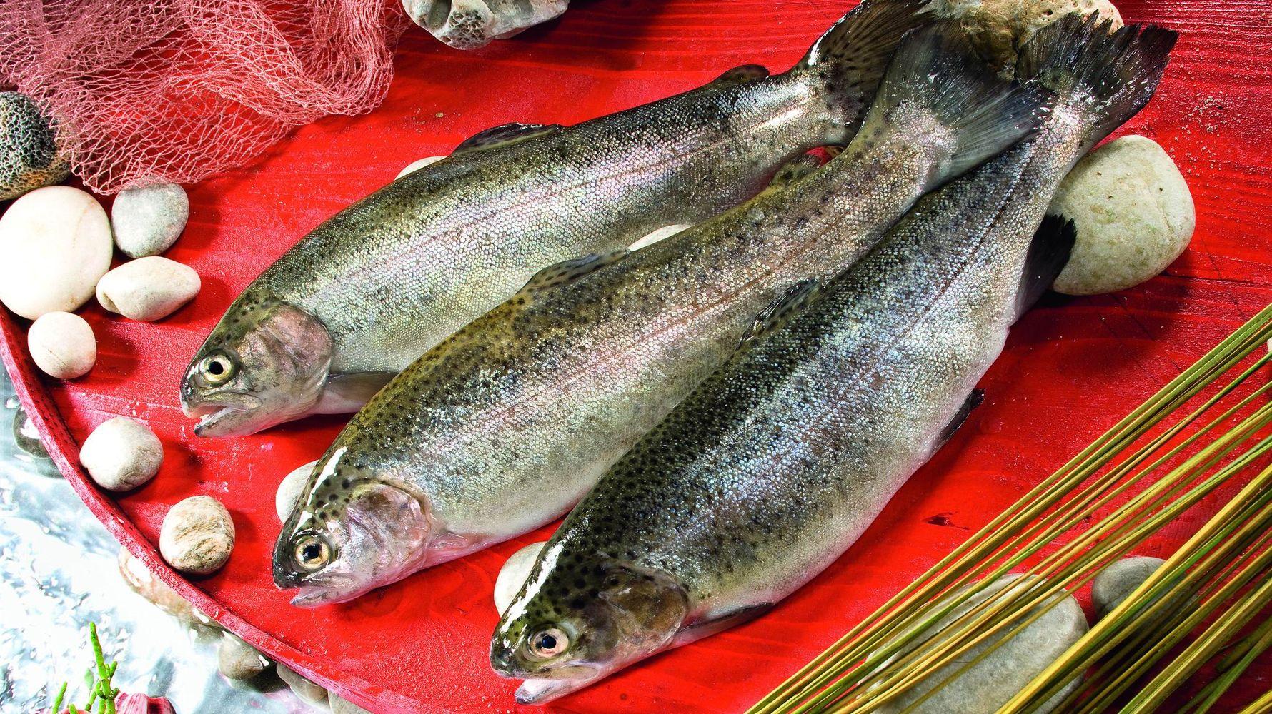 izvoz akvakulture i životinjskih proizvoda premašio je milijardu dolara u prošloj godini