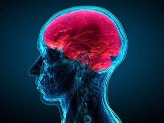 Die wichtigste Ursache für Kopf-Hals-Krebs