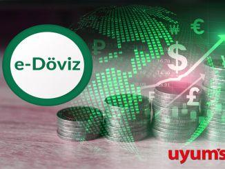 Cererea de documente de tranzacționare în valută începe în noul an