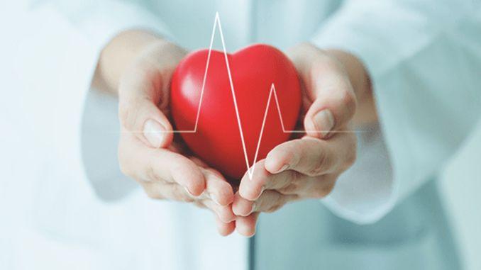 Welche Lebensmittel sollten vermieden werden, um die Gesundheit von Herz und Gefäßen zu schützen
